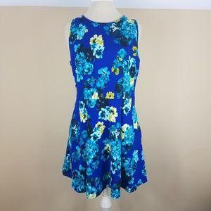 Pim + Larkin Blue Floral Fit and Flare Dress